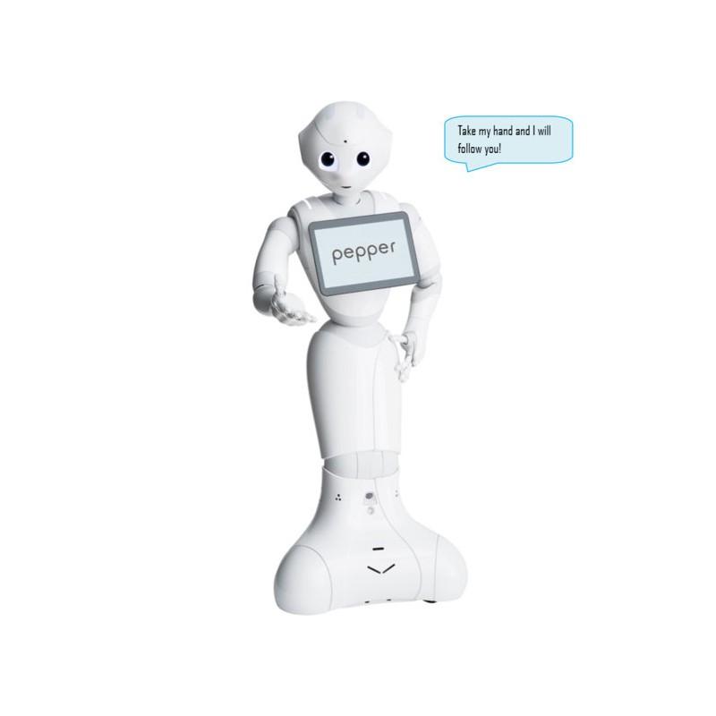 Presentations of Robots