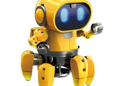 Tibo the Robot